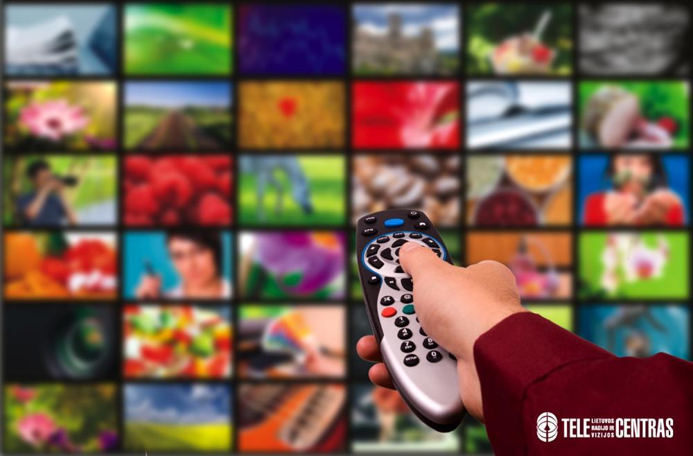 essay on television in punjabi